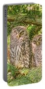 Sleeping Barred Owlets Portable Battery Charger