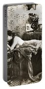Sleeping Beauty, C1900 Portable Battery Charger