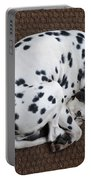 Sleeping Dalmatian II Portable Battery Charger