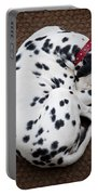 Sleeping Dalmatian Portable Battery Charger