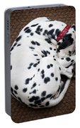 Sleeping Dalmatian Portable Battery Charger