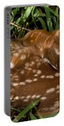 Sleeping Fawn Portable Battery Charger