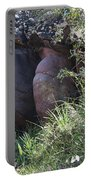 Sleeping In The Jungle - Stone Face In Forest Portable Battery Charger