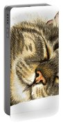 Sleeping Tabby Cat  Portable Battery Charger