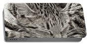 Sleeping Tabby Portable Battery Charger