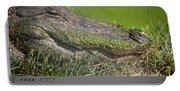 Sleepy Papa Gator Portable Battery Charger