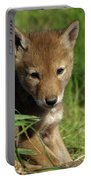 Sleepy Pup Portable Battery Charger