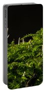 Small Forest Portable Battery Charger