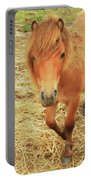 Small Horse Large Beauty Portable Battery Charger