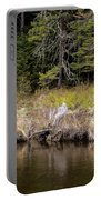 Small Marsh Portable Battery Charger