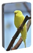 Small Yellow Budgie Parakeet In The Wild Portable Battery Charger