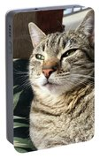Smartycat Portable Battery Charger