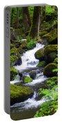Smokey Mountain Stream Portable Battery Charger