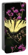 Smoky Mountain Butterfly Portable Battery Charger