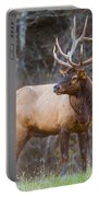 Smoky Mountain Elk II - North Carolina's Cataloochee Valley Wildlife Portable Battery Charger