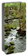 Smoky Mountain Stream 1 Portable Battery Charger