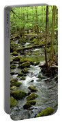 Smoky Mountain Stream 2 Portable Battery Charger