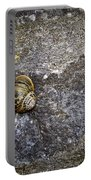 Snail At Ballybeg Priory County Cork Ireland Portable Battery Charger