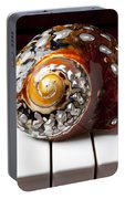 Snail Shell On Keys Portable Battery Charger
