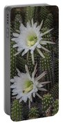Snake Cactus Flowers Portable Battery Charger