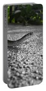 Snake In The Sun Portable Battery Charger