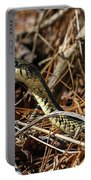 Snake Portable Battery Charger