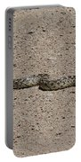 Snake On The Road Portable Battery Charger