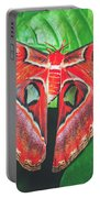 Snakehead Moth Portable Battery Charger