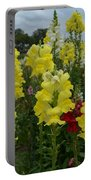 Snapdragons Flowers 3 Portable Battery Charger