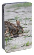 Sneaky Marsh Rabbit Portable Battery Charger