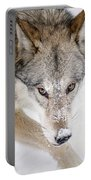 Sneaky Wolf Portable Battery Charger