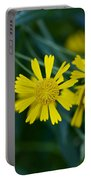 Sneezeweed Portable Battery Charger
