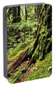 Snoqualmie National Forest Portable Battery Charger