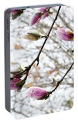 Snow Capped Magnolia Tree Blossoms 2 Portable Battery Charger