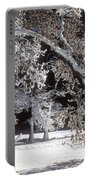 Snow Covered Black Oak Yosemite National Park Portable Battery Charger