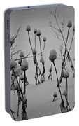 Snow Covered Coneflowers Portable Battery Charger