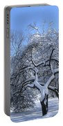 Snow-covered Sunlit Apple Trees Portable Battery Charger
