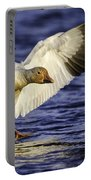 Snow Goose2 Portable Battery Charger