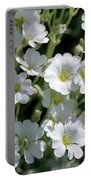 Snow In Summer Flowers Portable Battery Charger
