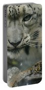 Snow Leopard 11 Portable Battery Charger