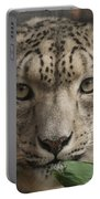 Snow Leopard 13 Portable Battery Charger