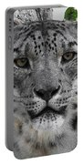 Snow Leopard 5 Posterized Portable Battery Charger