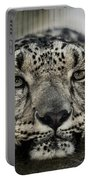 Snow Leopard Upclose Portable Battery Charger