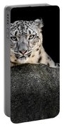 Snow Leopard Xxii Portable Battery Charger
