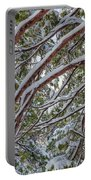 Snow On The Branches Portable Battery Charger