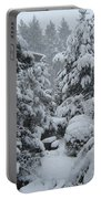 Snow, Snow, Snow, White Rock, B.c. Portable Battery Charger