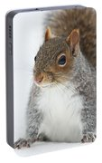 Snow Squirrel Portable Battery Charger