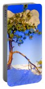 Snow Tree Portable Battery Charger
