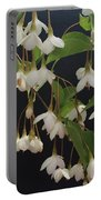 Snowbell Tree Portable Battery Charger