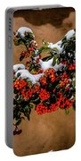Snowberries Portable Battery Charger